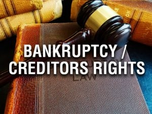 Reynolds, Reynolds, & LIttle services include Bankruptcy/ Creditors Rights